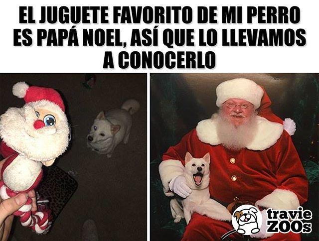 El Mejor Dia De Su Vida Navidad Santaclaus Papanoel Santa Christmas Dog Perro Memes Perros Humor Divertido Sobre Animales Perros Graciosos