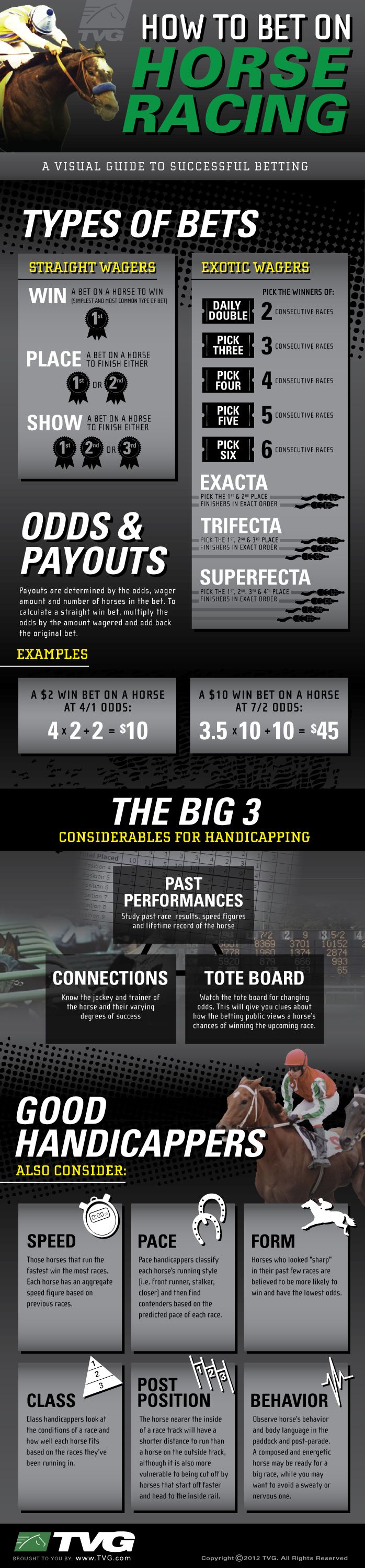 How To Bet On Horse Racing [INFOGRAPHIC]