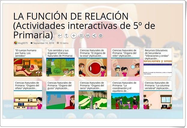 10 Actividades Interactivas Para El Estudio De La Función De Relación En 5º De Primaria Actividades Interactivas Kid Science Ciencias Naturales