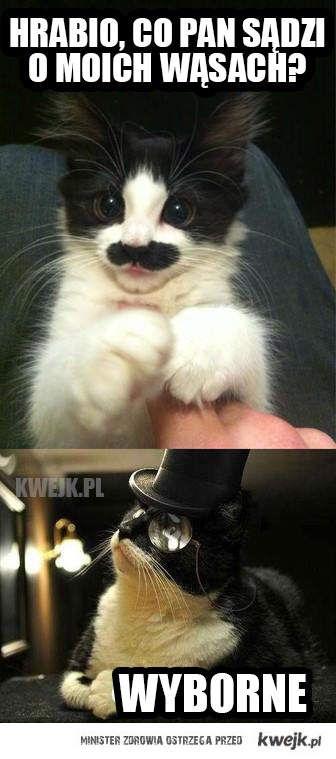 Frymuśne wąsy
