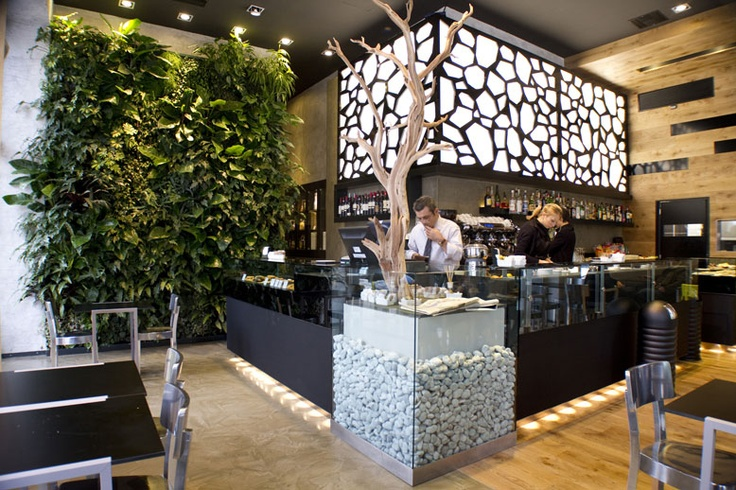 Oltre 25 fantastiche idee su giardini verticali interni su pinterest fioriere parete muro d - Giardini verticali interni ...