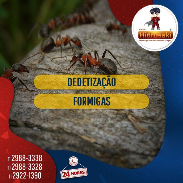Dedetização de formigas com eficácia. Eliminação de formigas indesejáveis nos ambientes através da dedetização. O serviço prestado de dedetização de formigas tem como finalidade eliminar as espécies de formigas e colônias formadas e bactérias em geral,  conforme resoluções e leis vigentes da ANVISA. Atuamos com a dedetização em hospitais, comércios, supermercados, condomínios, escolas, escritórios, indústrias, restaurantes, frigoríficos e entre outros. Dedetizar formigas é sinônimo de saúde.