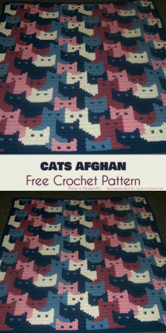 Gatos afegão - padrão livre de Crochet