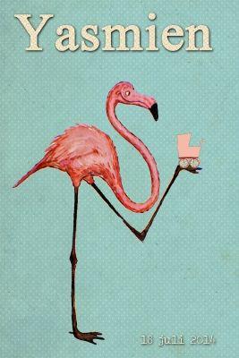 Geboortekaartje meisje - vintage - grappige flamingo met koets - Pimpelpluis - https://www.facebook.com/pages/Pimpelpluis/188675421305550?ref=hl (# flamingo - koets - dieren - roze - vintage affiche - retro - origineel)