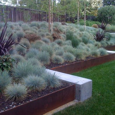 Modern steel edging with concrete. Blue Oat Grass with small bits of color. Landscape Retaining Walls Design, Pictures, Remodel, Decor and Ideas
