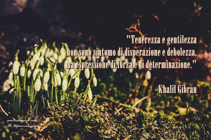 """""""Tenerezza e gentilezza non sono sintomo di disperazione e debolezza, ma espressione di forza e di determinazione."""" - Khalil Gibran"""