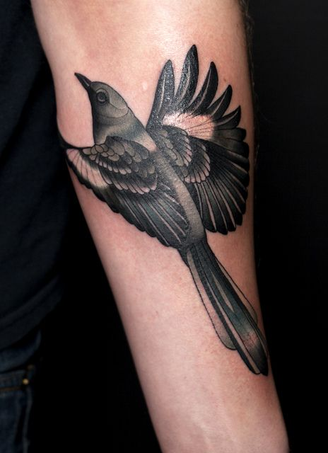 25 best ideas about mockingbird tattoo on pinterest tattoo design book reading tattoo and. Black Bedroom Furniture Sets. Home Design Ideas