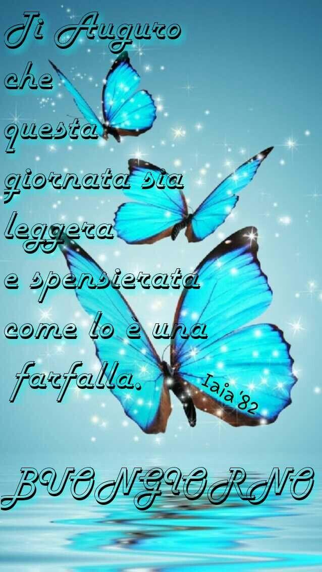 Blue # blu # farfalle # butterfly # Buongiorno