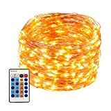 LED String Lights 99ft 300 LEDs Dimmable with Remote Control Waterproof Starry Lights for DIY Bedroom Patio Garden Gate Yard Party Wedding (Copper Wire Lights Warm White)