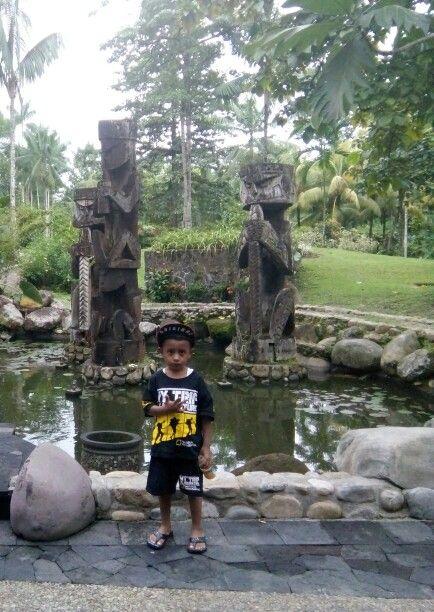 Rimba Papua