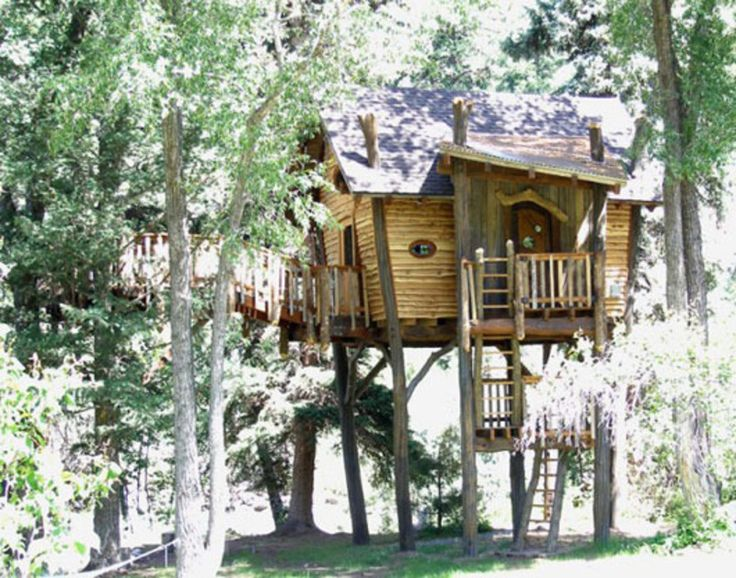 image detail for kids tree house designs small and artistic tree house design by - Cool Kids Tree House