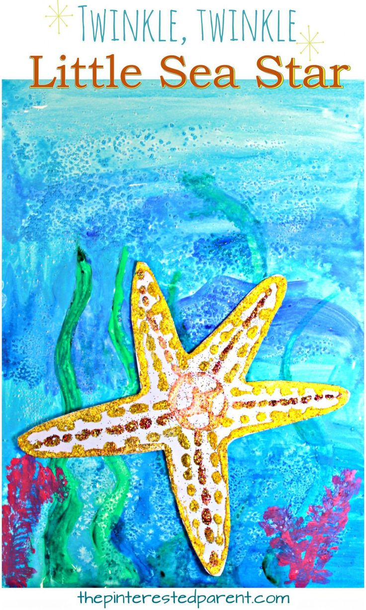 529 best images about under the sea beach themed ideas on for Sea life arts and crafts