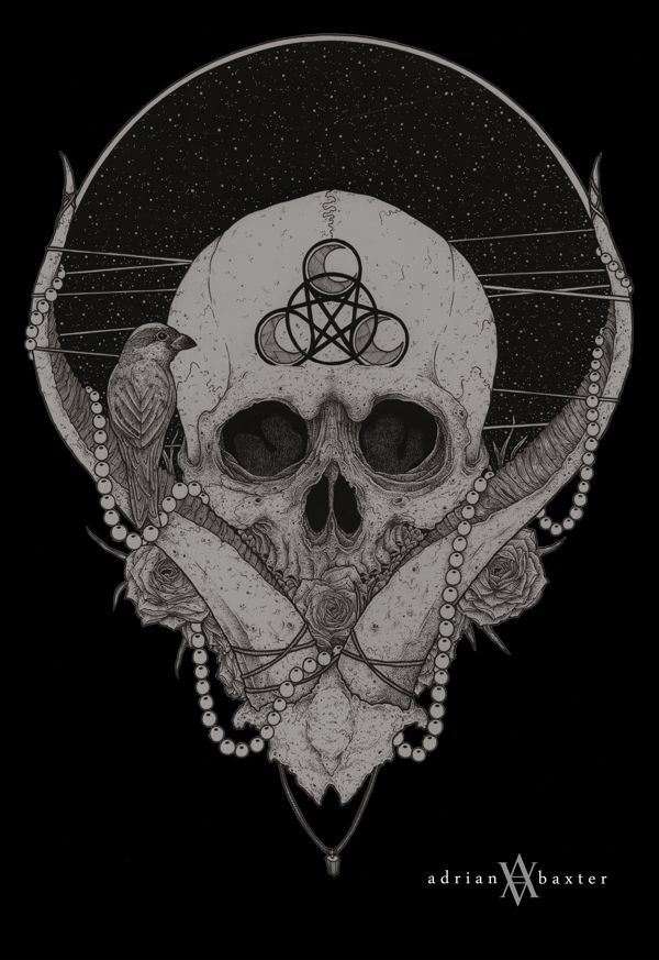 1000+ ideas about Skull Drawings on Pinterest | Skulls ...