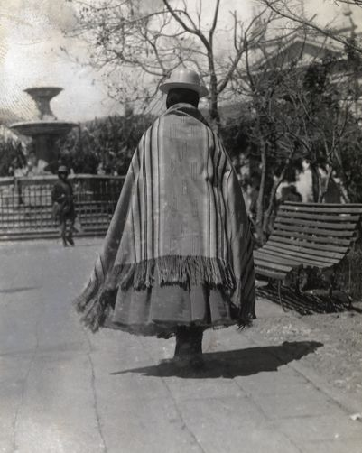 600099. A young mestiza woman in traditional dress walks in a park in La Paz.
