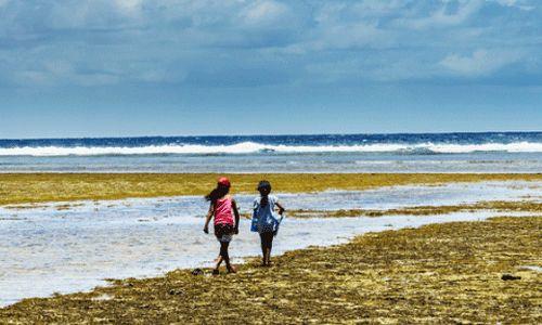 WHO | Marshall Islanders triumph against lymphatic filariasis