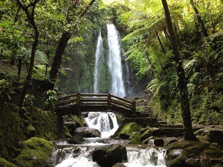 Air Terjun Jumog The Lost Paradise di Jawa Tengah - Jawa Tengah