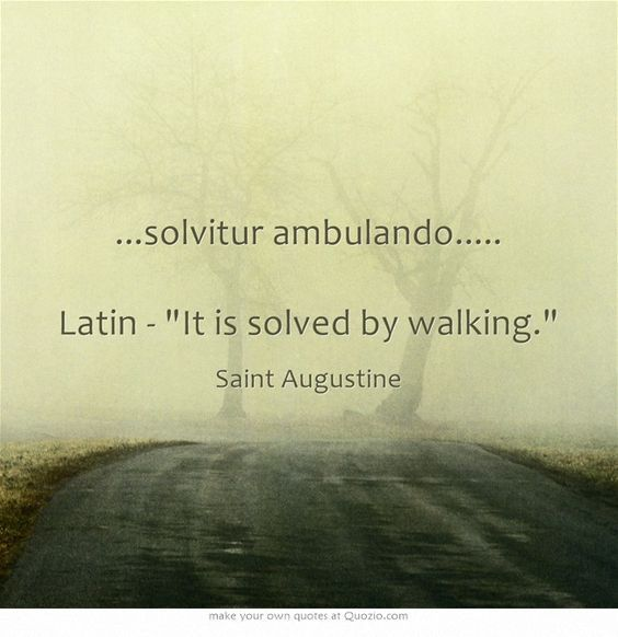 ...solvitur ambulando..... Latin - It is solved by walking. This is how I think of my pilgrimage on the camino (the Way of Santiago de Compostela).-Ginn: