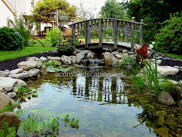 439 best images about koi koi ponds on pinterest for Garden state koi