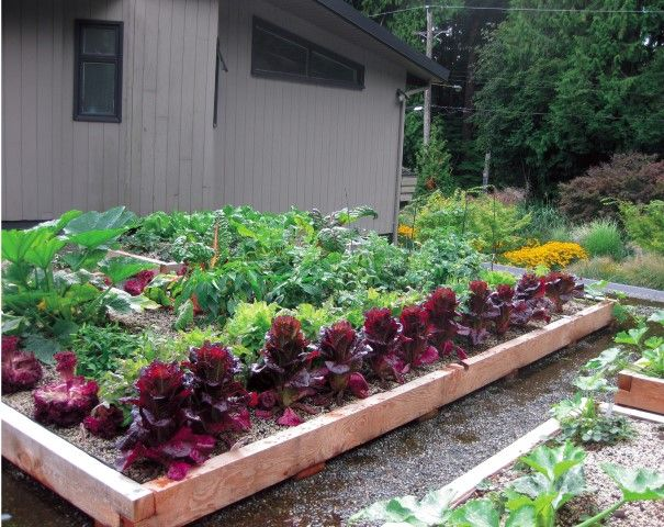 552 best images about small space gardening on pinterest