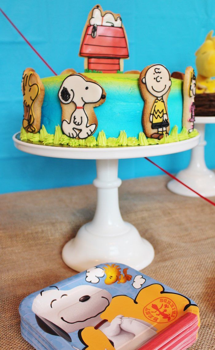 Birthday cake from Peanuts Charlie Brown Birthday Party at Kara's Party Ideas. See more at karaspartyideas.com!