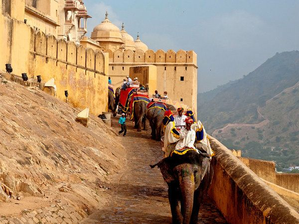 I did exactly this - rode up to the top of Amber Fort on the back of an elephant. Jaipur, India.