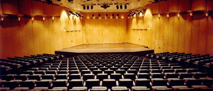 Η Αίθουσα Δημήτρη Μητρόπουλου έχει το όνομα του διάσημου έλληνα αρχιμουσικού. Μπορεί να φιλοξενήσει 450 άτομα.