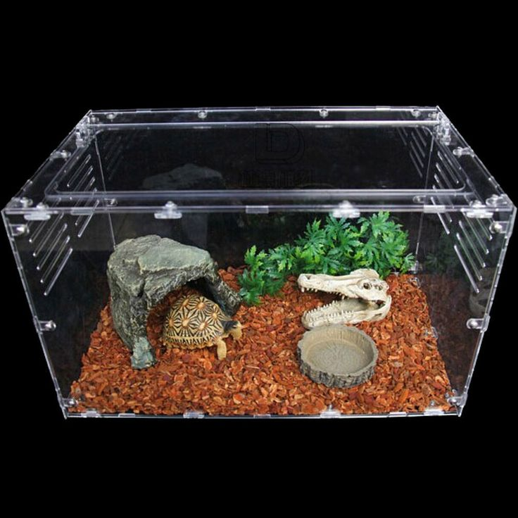 Crystal Acrylic Reptile Tank Empty Cage Breeding Box Spider Insect Tortoise | eBay