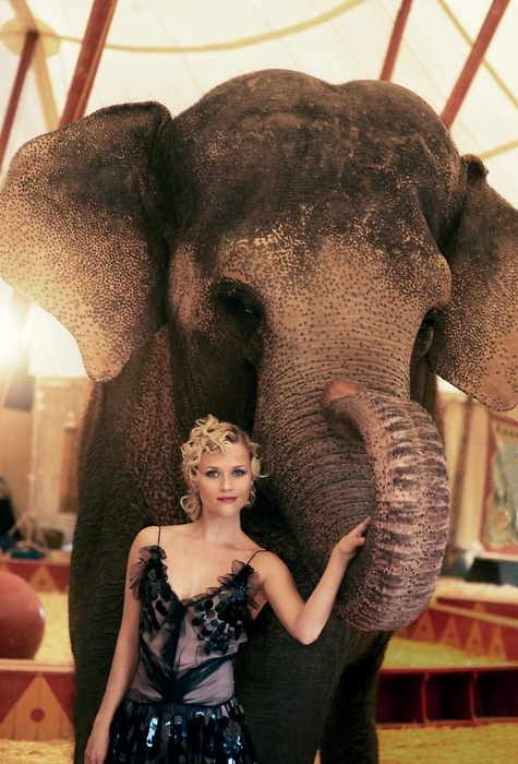 Water for Elephants. Reesewitherspoon, Great Movie, Reese Witherspoon, Water For Elephant, Ree Witherspoon, Beautiful, Peter Lindbergh, Movie Stars, Vogue Covers