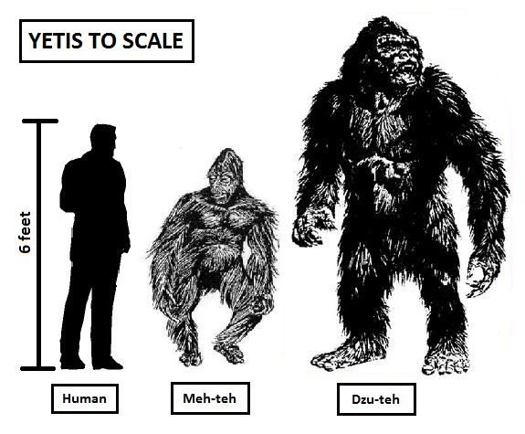364 Best All Things Bigfoot Images On Pinterest