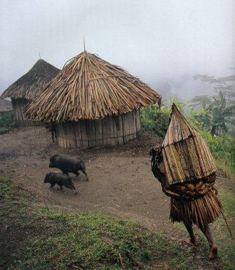 Yali village in the Central Highlands, Irian Jaya (Papua), Indonesia