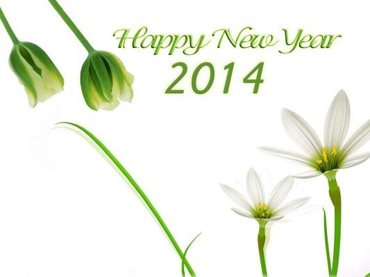 Happy New Year 2014 Special Messages | New Year 2014 Msgs | Happy New Year 2014