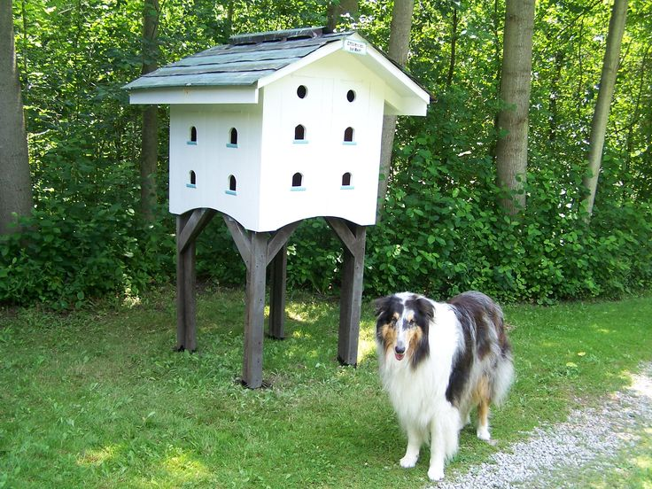 how to make a dovecote roof