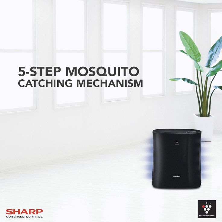 The Sharp Plasmacluster Air Purifier with Mosquito Catcher: Your Defense Against the Threats of Dengue and Zika
