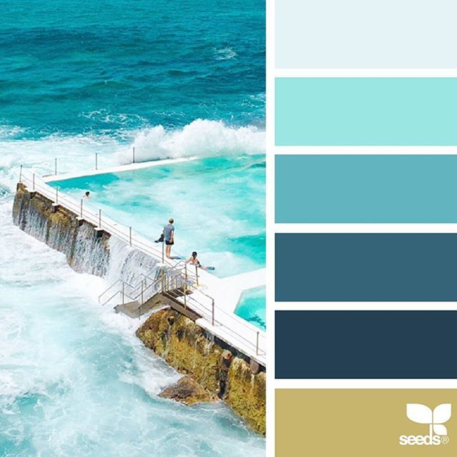 today's inspiration image for { color swim } is by @colourspeak_kerry_ ... thank you, Kerry , for another breathtaking #SeedsColor image share!