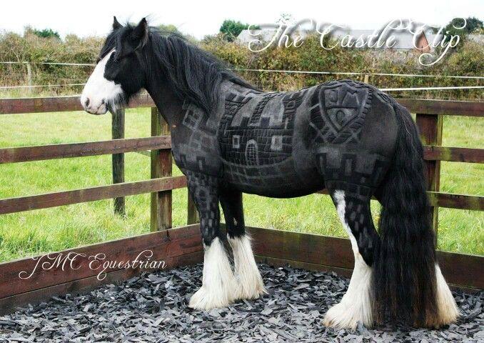 Creative horse clipping