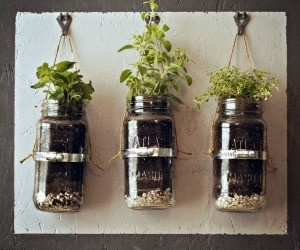 Really want to make this in-home garden for herbs!  YUMMY!