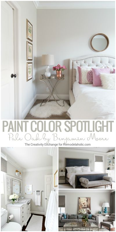 Color Spotlight  Benjamin Moore Pale Oak. 17 Best ideas about Bedroom Paint Colors on Pinterest   Interior