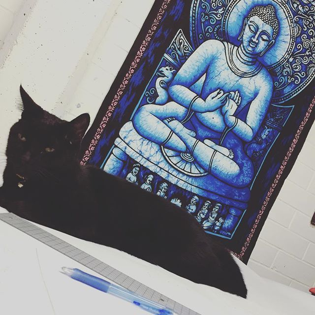 Pattern making partner Panfy  home studios have their benefits, everyday is bring your pet to work day  #blackcatsofinstagram #blackcats