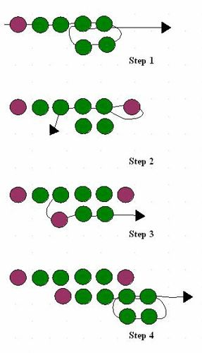 St.Petersburg Stitch detailed tute.  Diagrams and video.  #Seed #Bead #Tutorials
