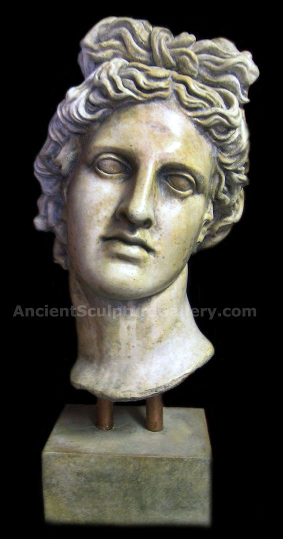 Apollo Belvedere Large Bust Greek Marble Statues