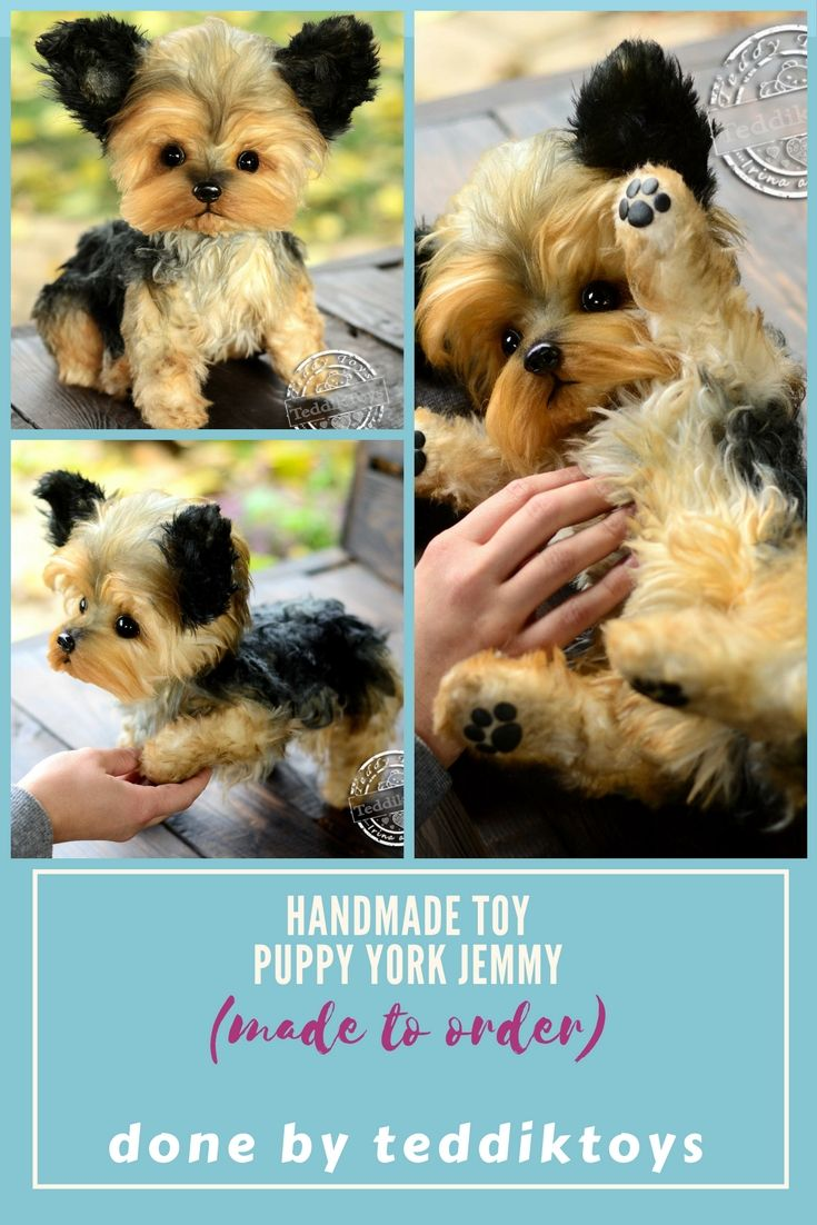 yorkshire terrier puppy yorkie doggies . Handmade toys Possible to order . Price $ 450 more detailed description you can find at our store etsy