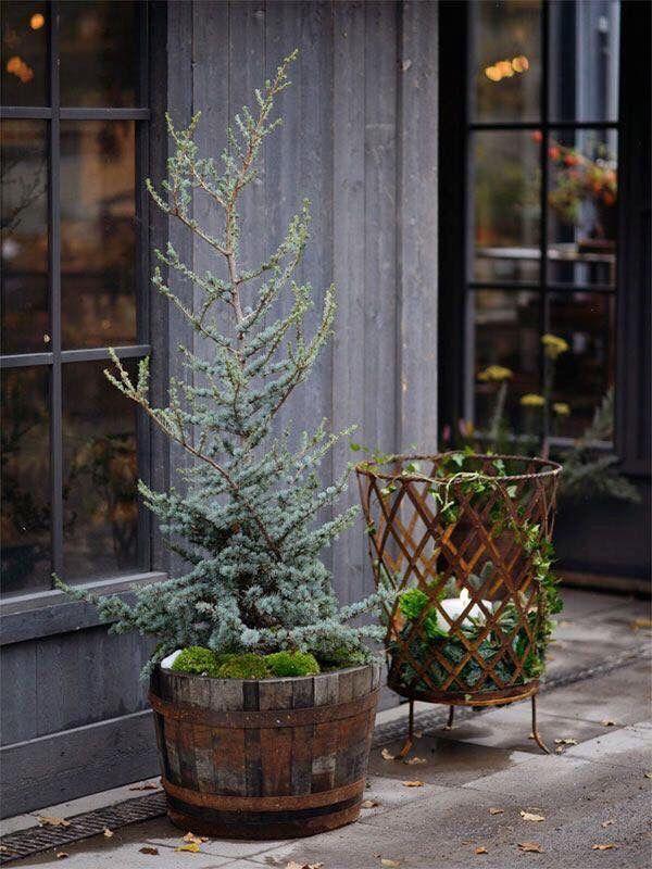 Weihnachtsdeko ✵ Hauseingang.