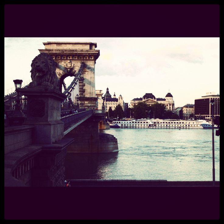 Budapest budapeşte bridge lion