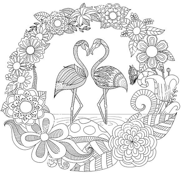 Flamingos Bird Coloring Pages Flamingo Coloring Page Animal Coloring Pages
