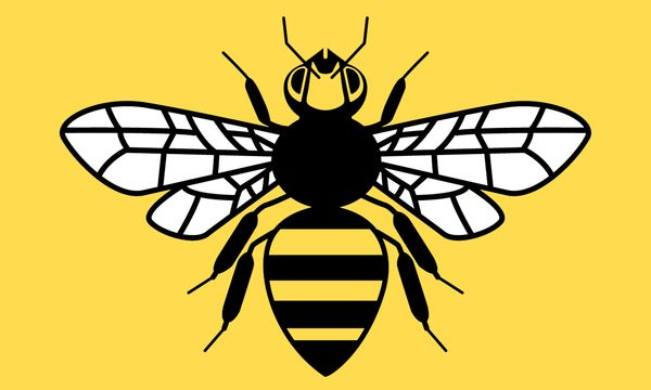 county_flag_of_greater_manchester___honey_bee_by_golborne_identity-d6ed541.png (600×360)