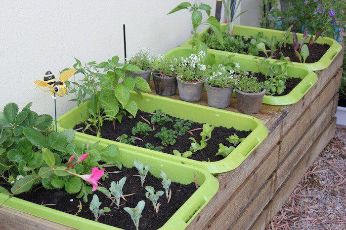 carré-potager-balcon-bac-a-fleur-en-palette-jardin-sur-pied-bassine-plastique