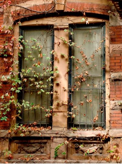 great old window...