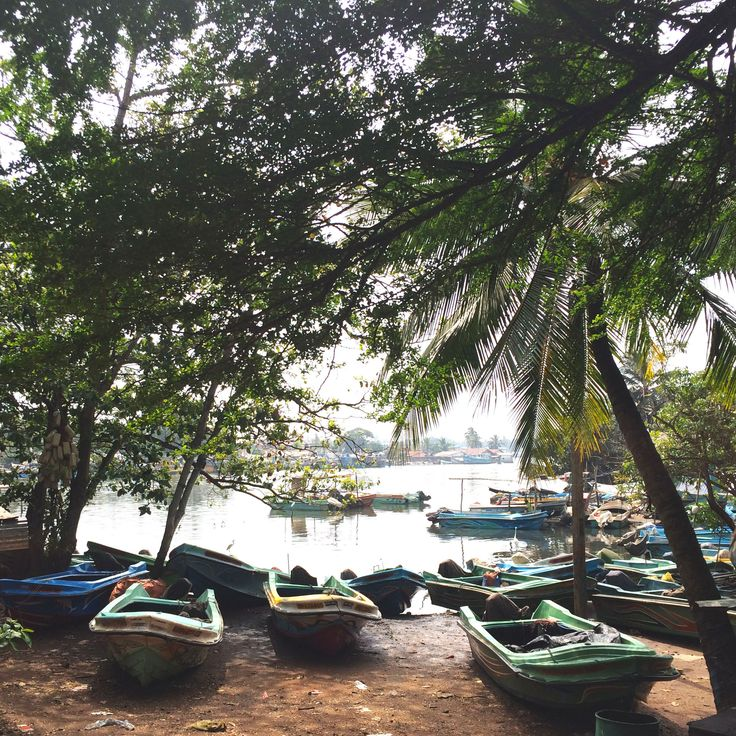 Located just 8km from Colombo Bandaranaike International Airport, the small but quaint coastal cityof Negombo is a perfect stop off point for a first or last day in Sri Lanka and is easily explored in a day. The large expanse of beach and pretty Dutch canals made for lovely strolls to walk off our jet…