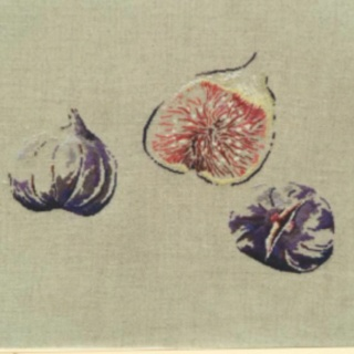 Figs in cross stitch by Marie Therese st Aubin