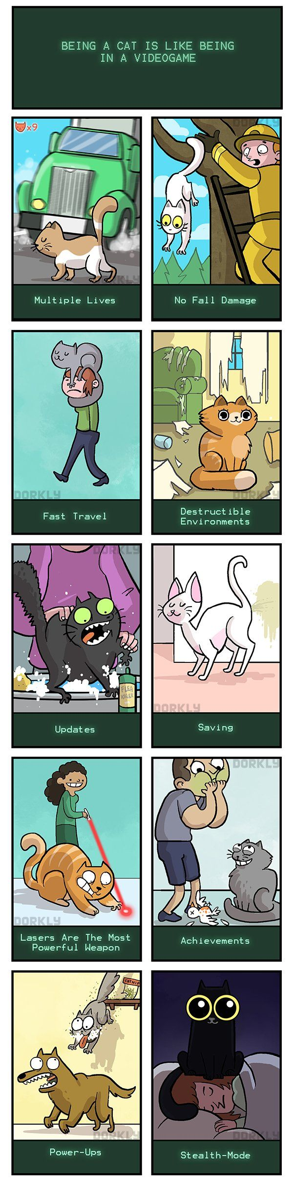 Being a cat is like being in a video game XD